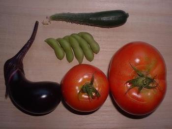 nasu&tomato&kyu-ri&edamame.JPG