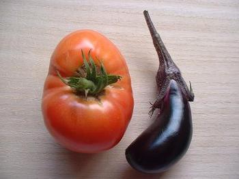 nasu&tomato4.JPG